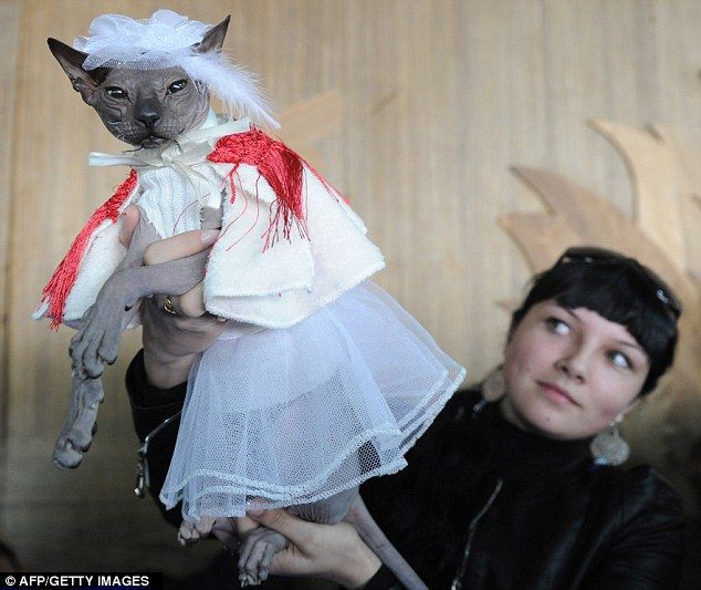 This looks not to dissimilar to a Gremlin in a wedding dress!
