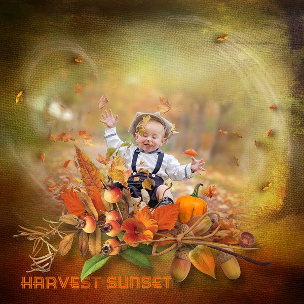 """NEW*NEW*NEW """"Harvest Sunset"""" Collection by Designs by Brigit https://www.digitalscrapbookingstudio.com/designs-by-brigit/ each pack only $1.00 until October 28th, photo Marika Burder use with permission"""