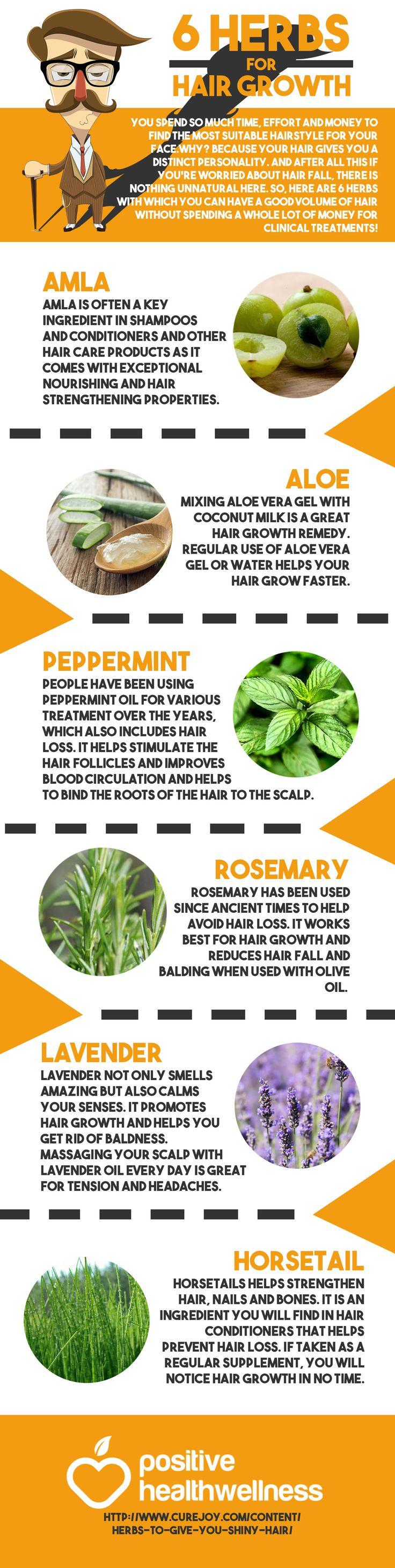 6 Herbs for Hair Growth – Positive Health Wellness Infographic