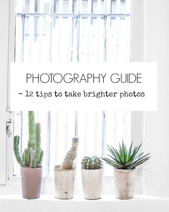 It's time for another Photography Guide post and learn top 12 tips to take brighter photos.