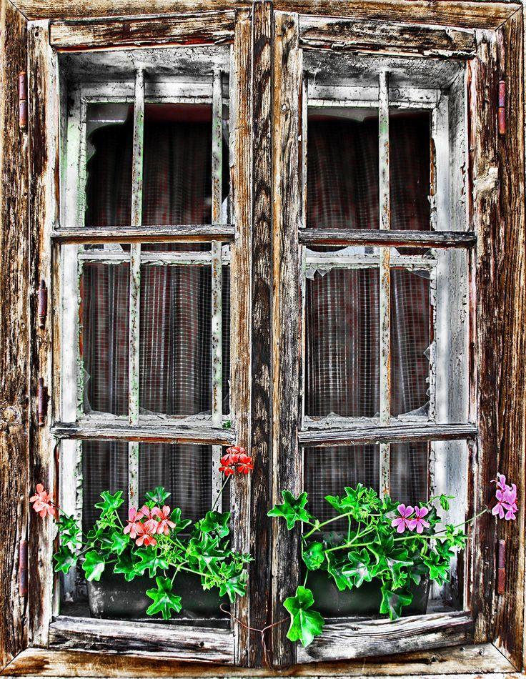 window-1268631_1920.jpg (1487×1920)