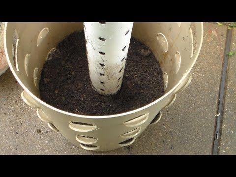 ▶ How to Build a Sustainable Grow Tower - Grow 40 plants in 4 Sq. Ft. - YouTube