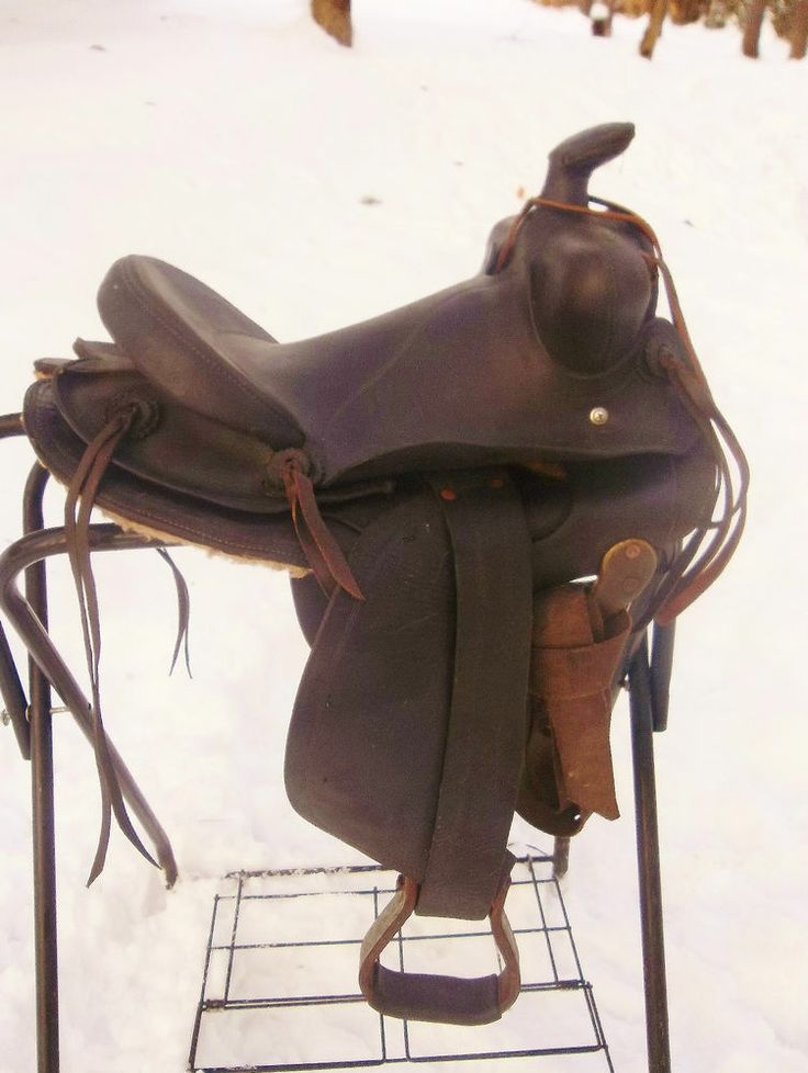 49 Best Horse Stuff Images On Pinterest Horses Saddles