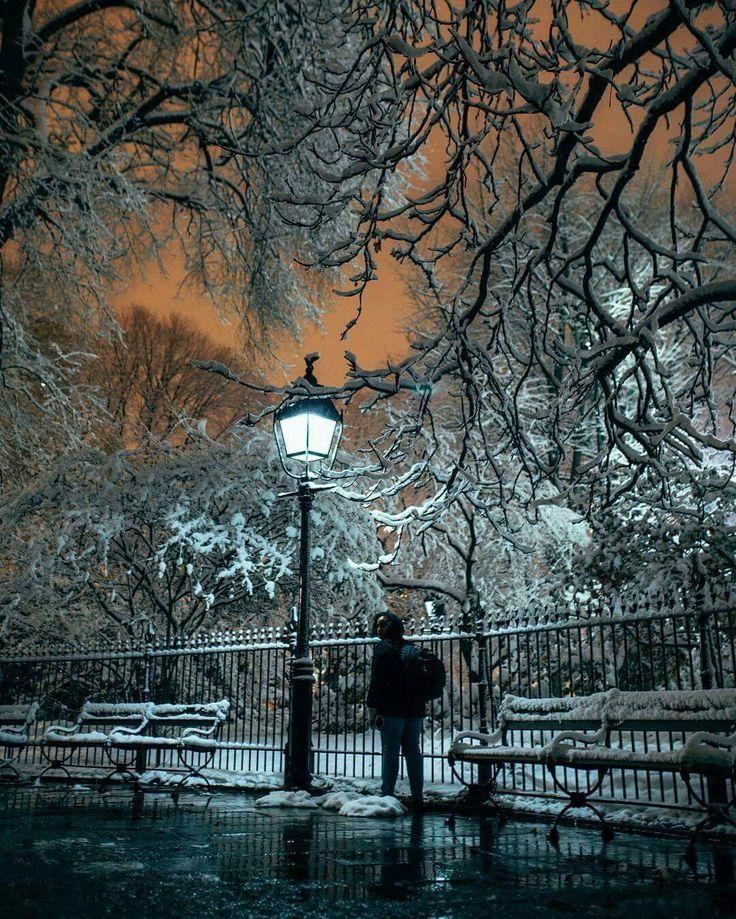 Spectacular night shot at Central Park <3 Photo: Alex Maysonet