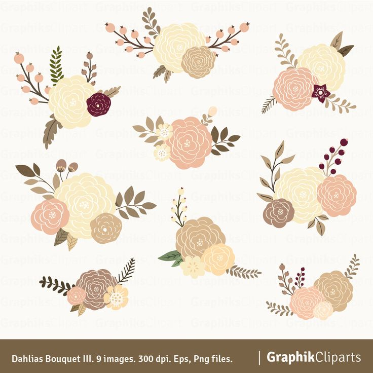 Bouquet di dalie III. Clipart floreali. Clipart di fiori. Fiori per inviti di nozze. 9 immagini, 300 dpi. EPS, Png file. Download immediato. di Graphikcliparts su Etsy https://www.etsy.com/it/listing/204319295/bouquet-di-dalie-iii-clipart-floreali