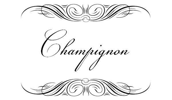 30 Elegantes y bonitas tipografías ornamentales para invitaciones de Boda y otros eventos