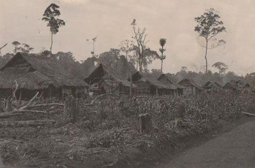 Setibanya di Lampung, sebelum menempati gubuk pribadi, para kolonis di Metro terlebih dahulu menempati bedeng berupa gubuk sederhana.