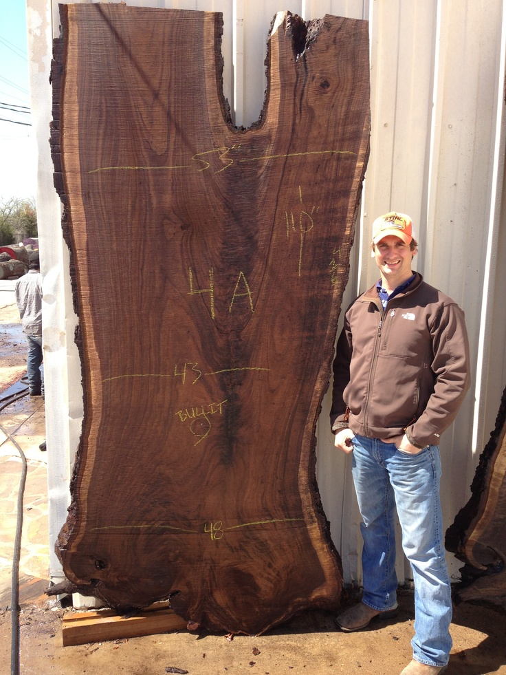 Massive Black Walnut Slab From East Texas Walnut Slabs
