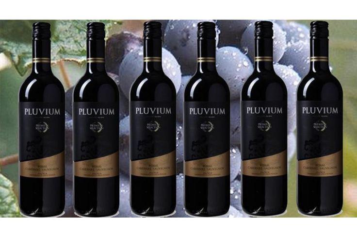 De Cuvée Pluvium 'Premium Selection' uit het jaar 2015 weerspiegelt de passie en liefde waarmee deze prachtige wijn is gemaakt. In het glas van de wijn heeft een prachtige granaatrode kleur. Haar betoverende boeket heeft levendige indrukken van rijpe rode kersen, pruimen en elegant tonen van violet. Proefnotitie De Cuvée Pluvium 'Premium Selection' uit het jaar 2015 weerspiegelt de passie en liefde waarmee deze prachtige wijn is gemaakt. In het glas van de wijn heeft een prachtige…