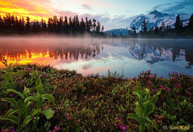 lake reflectionWater Reflections, Fire And Ice, Funny Pictures, Wonder World, Beautiful, Sunris, Colors Palettes, Nature Photography, Places