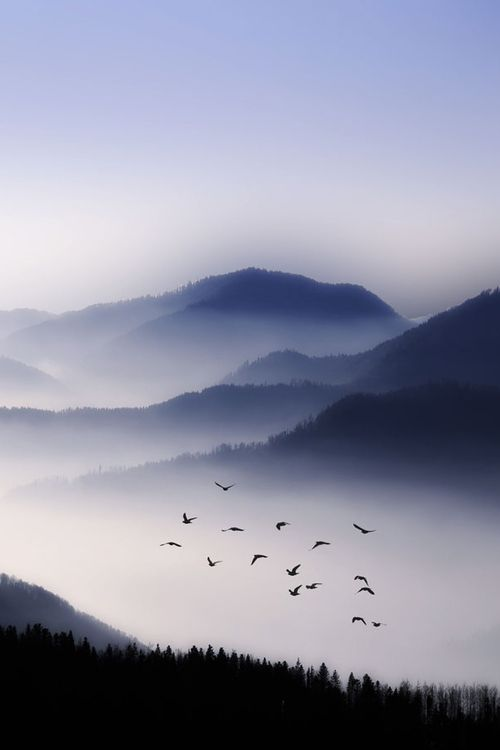 Flying Over The Fog - © Philippe Sainte-Laudy