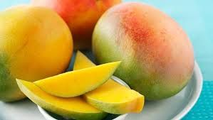 It's Mango Season here in Australia and they come from the Tropical part of the country closer to the Equator. That's Tropical North!