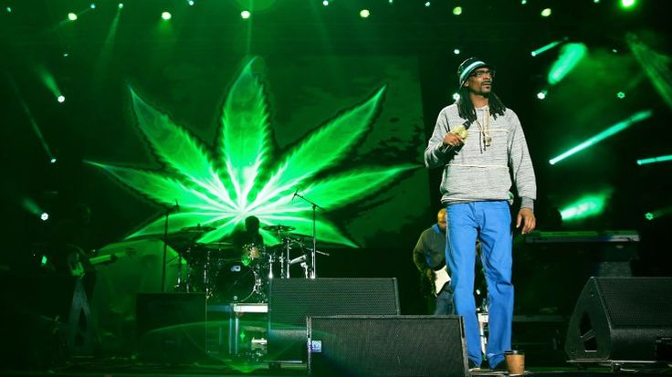 Snoop Dogg Is Raising A Fund For Investing In Weed Startups | TechCrunch