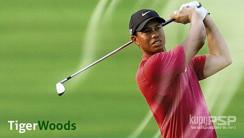 evaluation of tiger woods speech Tiger woods essay 585 words | 3 pages tiger woods was born with the name eldrick woods on december 30, 1975 more about tiger woods essay a brief biography of tiger woods essay 878 words graduation speech essay.
