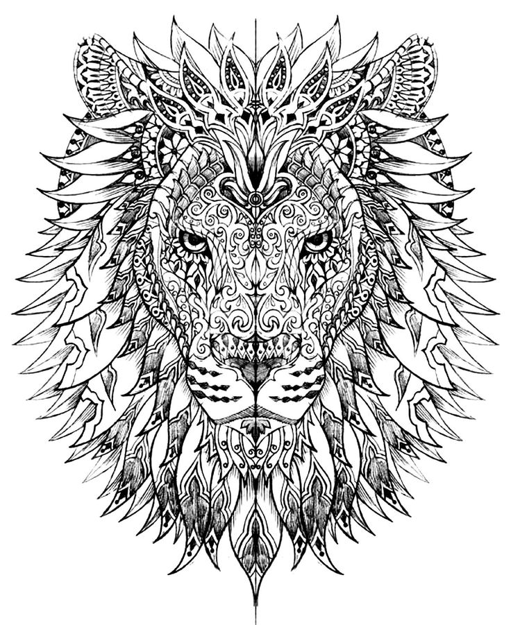 Galerie de coloriages gratuits coloriage-adulte-difficile-tete-lion.