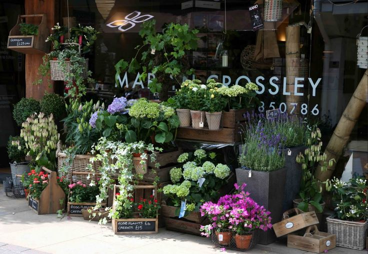 Florist shop ideas