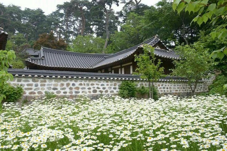 korean house with flowers