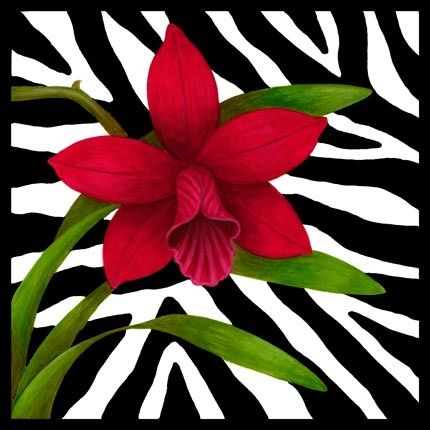 Zebra 3 Printable modpodge or scrapbooking