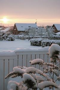 Winter is beautiful!