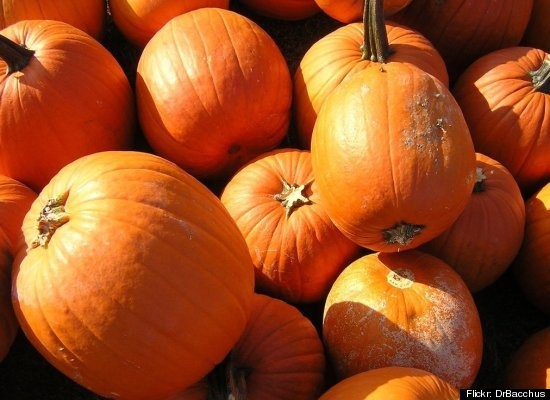"""Pumpkin - Manhattan chef Michael Gabriel puts on gloves when he has to work with this fall squash. """"It's mainly the texture and the feel of it - it makes me very squeamish"""