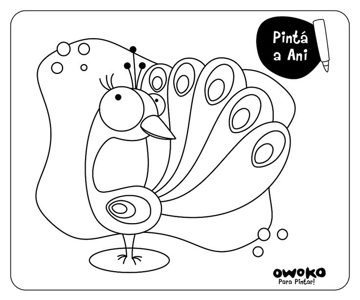 www.owoko.com