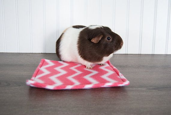 Guinea+Pig+Water+Bottle+Pad+/+Chevron+/+Hot+Pink+/+by+RubyandEthel,+$6.00