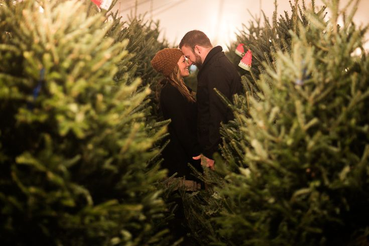 With Corn Instead Of Trees For Engagement Photos Yes Christmas Tree Farm Photos Christmas Tree Farm Photo Shoot Tree Farm Photo Shoot