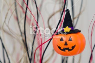 Jack O' Lantern Halloween pumpkin Royalty Free Stock Photo