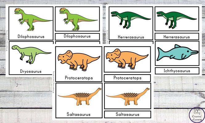 Free Printable Dinosaur Cards In 2021 Dinosaur Cards Dinosaur Printables Dinosaur Printable dinosaur worksheets pdf