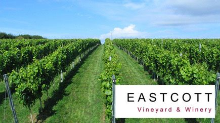 Visit an English vineyard in Devon or West Yorkshire for a homegrown wine tasting experience, taste several wines and take a bottle home.