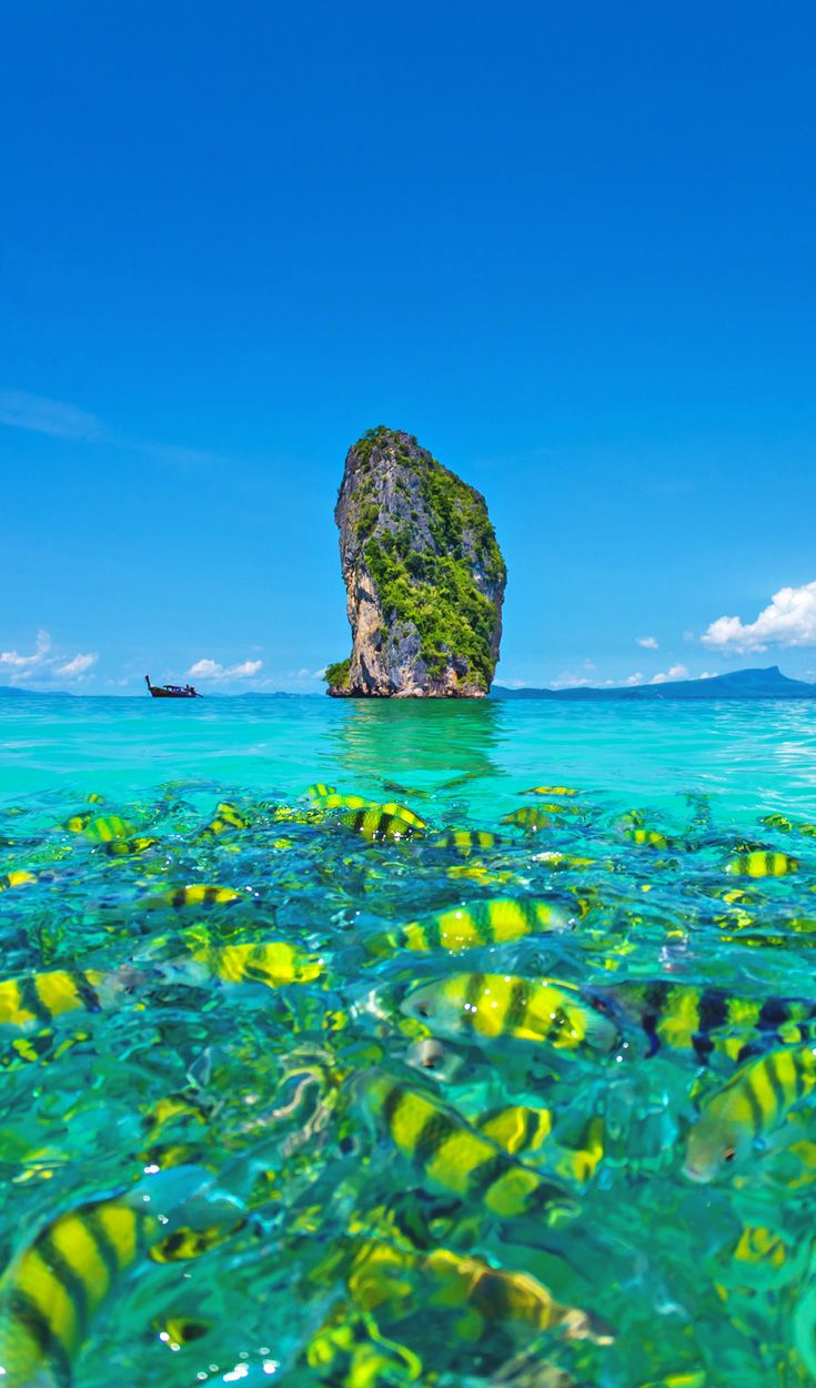 Poda Beach   Travel Guide To Phuket: Things To Do in Phuket And Places To Stay   Phuket offers natural beauty, rich culture, white beaches, tropical islands and plenty of adventure activities   via @Just1WayTicket   Photo © netfalls/Depositphotos