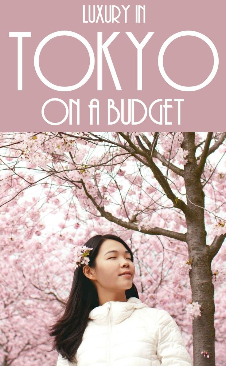 Luxury in Tokyo on a budget. Make the most of your time with these tips of where to go in Tokyo and things to see and do in Tokyo including the glorious Cherry Blossom Festival, shopping malls and grandiose buildings. Where to go in Tokyo / Deals for Tokyo / Attractions in Tokyo / Dining in Tokyo / Shopping in Tokyo #Tokyo #Asia