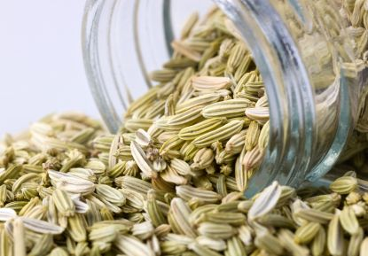 Fennel features prominently in Mediterranean cuisine, where bulbs and fronds are used, both raw and cooked, in side dishes, salads, pastas, vegetable dishes and risottos.[citation needed] Fennel seed is a common ingredient in Italian sausages and meatballs and northern European rye breads.