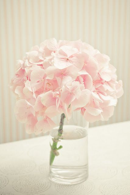 Soft Pink Hydrangea in small touches for petite arrangements; For Centerpiece #2, these take centerstage in soft blush tones surrounded by candlelight