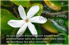 Cartes joyeux anniversaire en retard - Joliecarte.com                                                                                                                                                                                 Plus