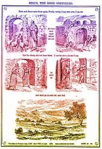 John Chapter 10: Jesus, the Good Shepherd