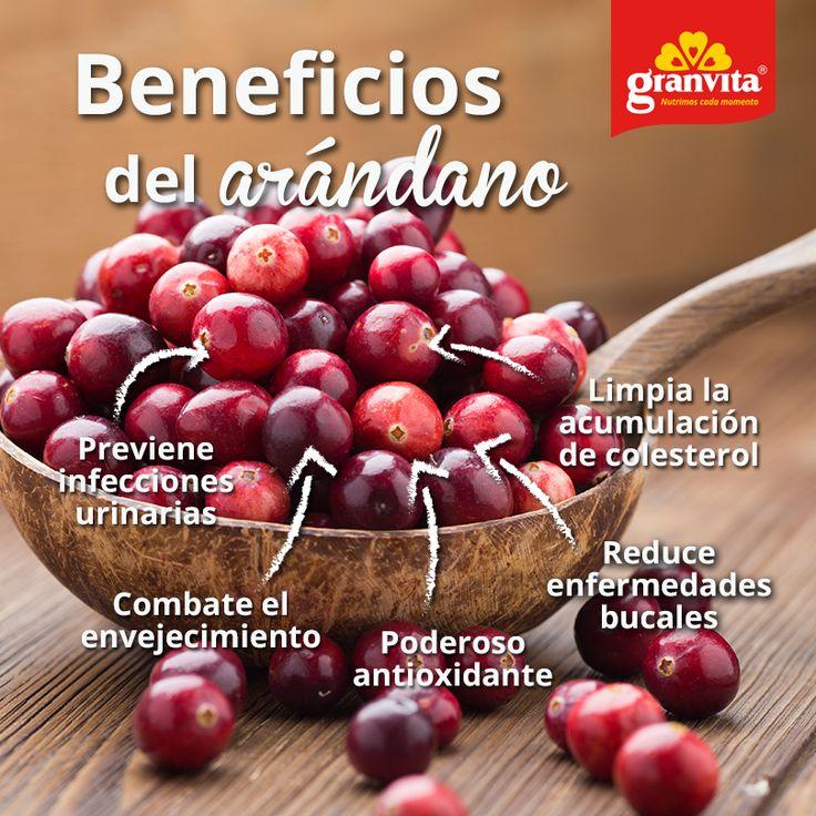 El arándano es un buen aperitivo que además de ser antioxidante, tiene más beneficios. Conócelos.