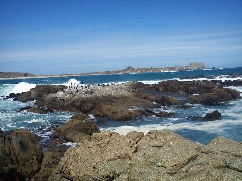Punta de Tralca.