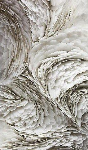 #texture