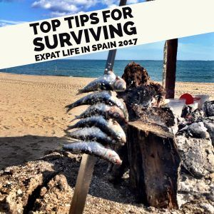Our Top Tips for Surviving and Enjoying Expat Life in Spain.  As we mentioned previously, Spain is tightening its belt economically. The taxman is going for every centimo possible as the government looks for ways to reduce the national debt. We have been seeing this happen at the expense of taxpayers and business owners. However, the quality of life and Spain, in general, still make it worthwhile to moving over and living here.