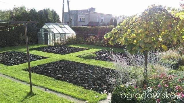 Pokażę nasz ogród - strona 307 - Forum ogrodnicze - Ogrodowisko