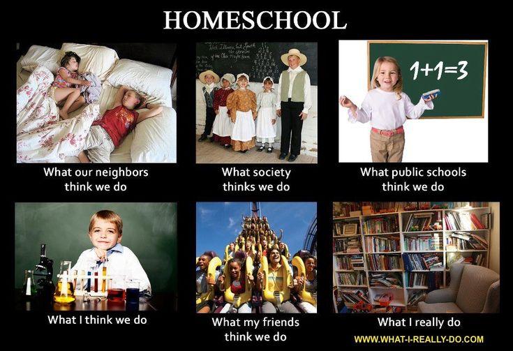 Some Homeschool Humor