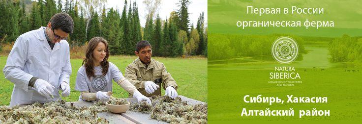 Natura Siberica là hãng mỹ phẩm của Ngađược nhận giải thưởng Best Green Cosmetics trao tặng năm 2012