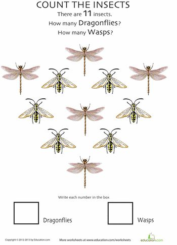 24 best Wasps images on Pinterest | Insects, Wasp and Bees