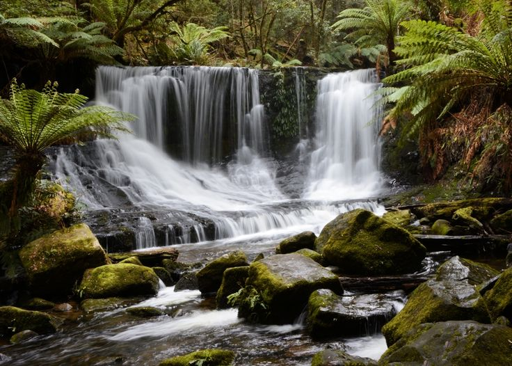 Horseshoe Falls Tasmania 'Worldscapes Photo Contest' placing in the top 10 class ahead of 136,076 images