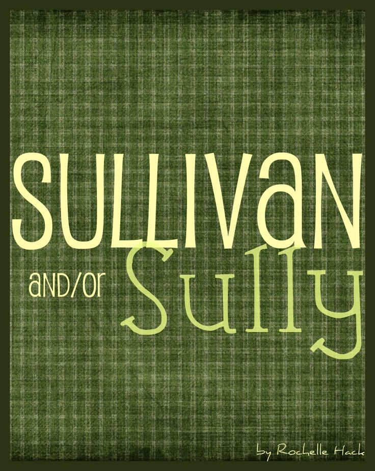 Baby Boy Name(s): Sullivan and Sully. Meaning: Dark Eyes (Sullivan) From the South (Sully). Origin: Irish; Gaelic; English. Sully is the perfect nickname for Sullivan and both names are on here because they also work as individual names. http://www.pinterest.com/vintagedaydream/baby-names/