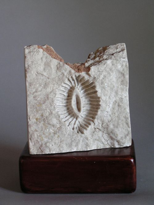Alabaster Carved Stone, Marble, Alabaster, Soap Stone Sculptures #sculpture by #sculptor Tabitha Sheehn Davis titled: 'Corallite (Abstract Indoor Coral Fossil statues)' £1044 #art