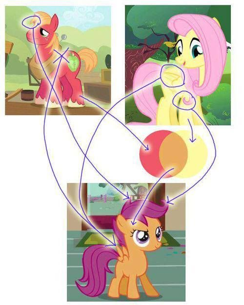Take a moment to look at this photo. Follow the lines. This was proven by the creator of the show. Fluttershy and Big Mac are indeed Scootaloo's parents.  This is also the reason why Scootaloo can't fly very well. I WANT NO ARGUING ON THIS PIN! I DONT CARE WHO YOU SHIP FLUTTERCORD, FLUTTERMAC I DONT CARE. DO NOT ARGUE ON THIS PIN! NO FIGHTING! PLEASE!