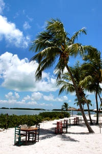 Morada Bay Beach Cafe. Key Largo, FL. One of the most romantic restaurants I've been to! Shoes not required.