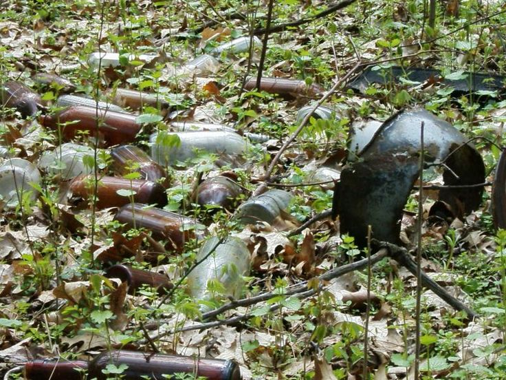 Here's what to look for to find bottle dumps in the woods - Friendly Metal Detecting Forums